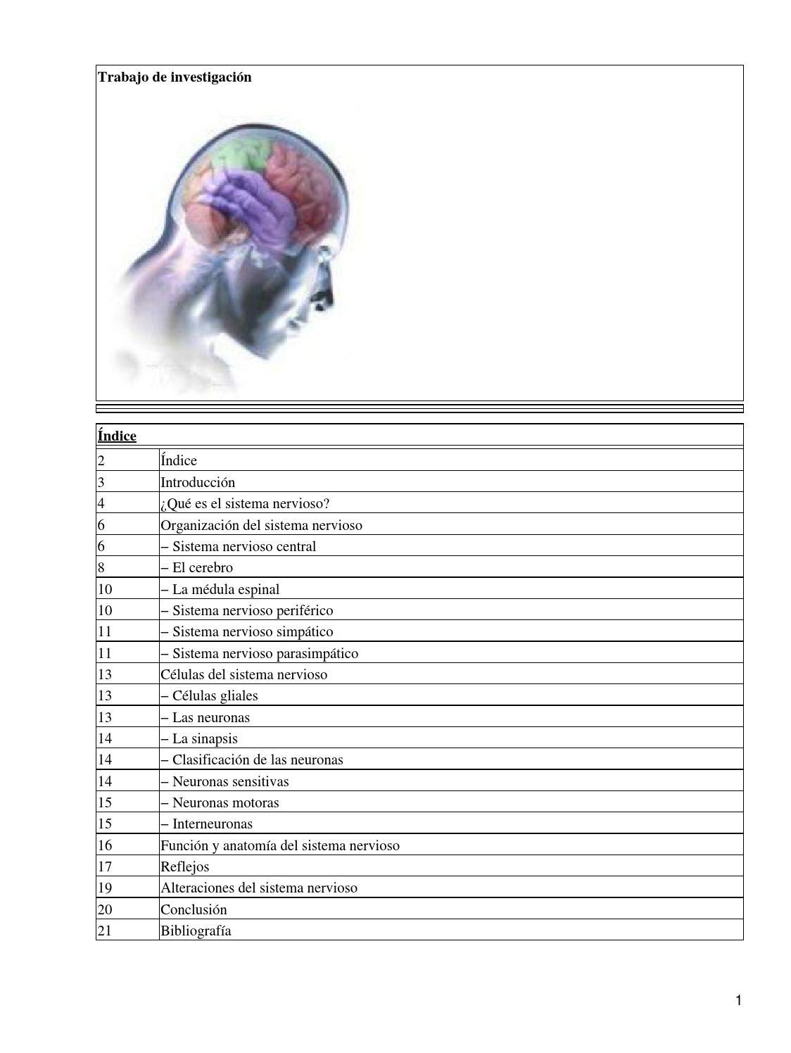 Sistema nervioso trabajo by Jesus Sotomayor - issuu