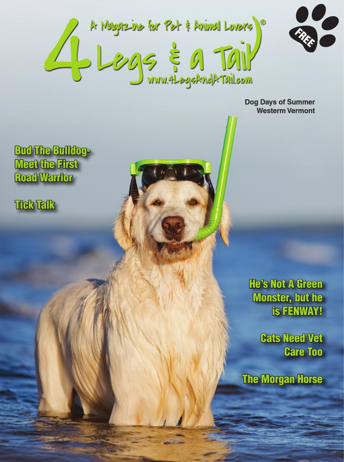 4 Legs and a Tail - Rutland Summer 2015 by 4 Legs & a Tail - issuu