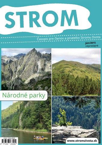 99468e2c04f1 Strom 6-2015 by Strom života - issuu