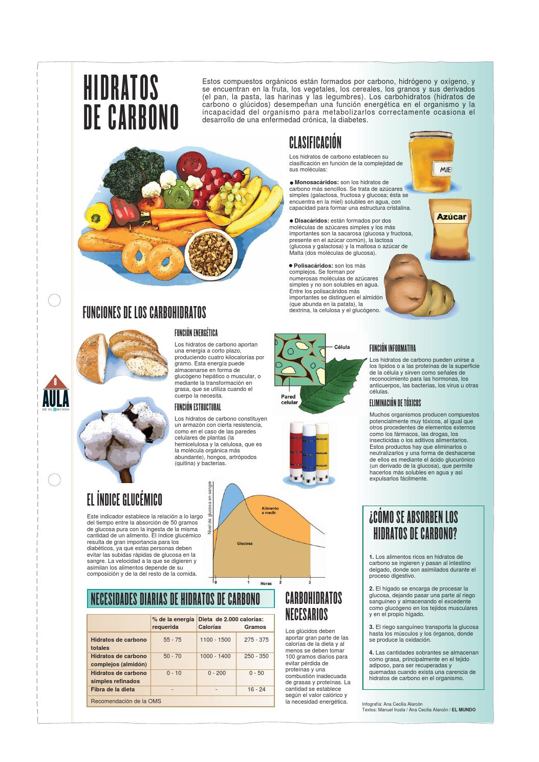 Infografia carbohidratos by lucia.castro - issuu