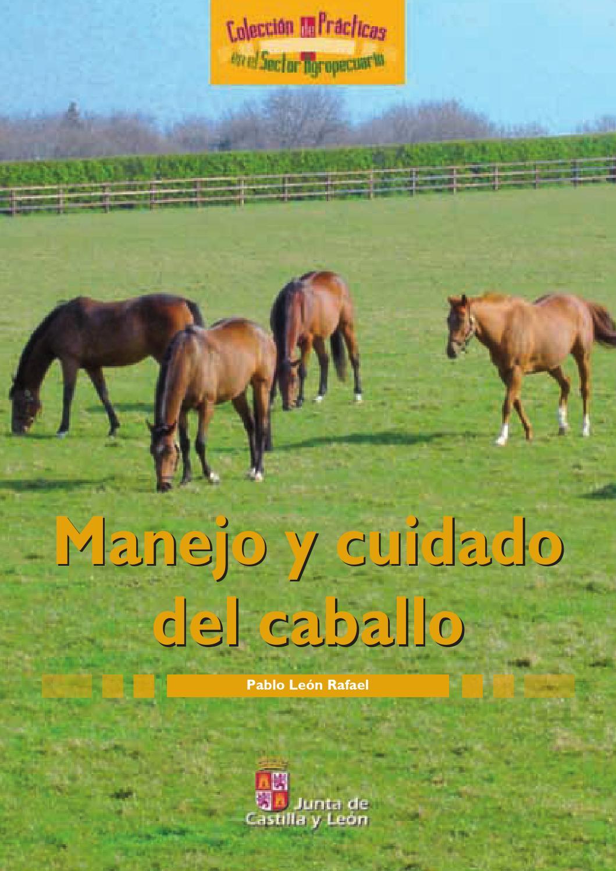 Cuidados del caballo by Jesus Monarrez Ronquillo - issuu