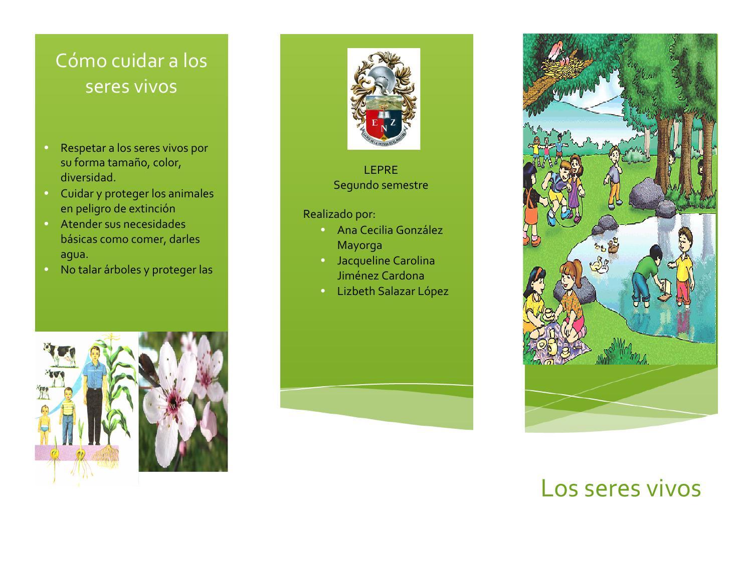Triptico seres vivos by lizbeth salazar issuu for Los arboles y sus caracteristicas
