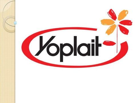 presentaci243n yoplait by jeimmy morales issuu