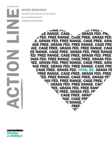Action Line Summer 2015 By Foaorg Issuu