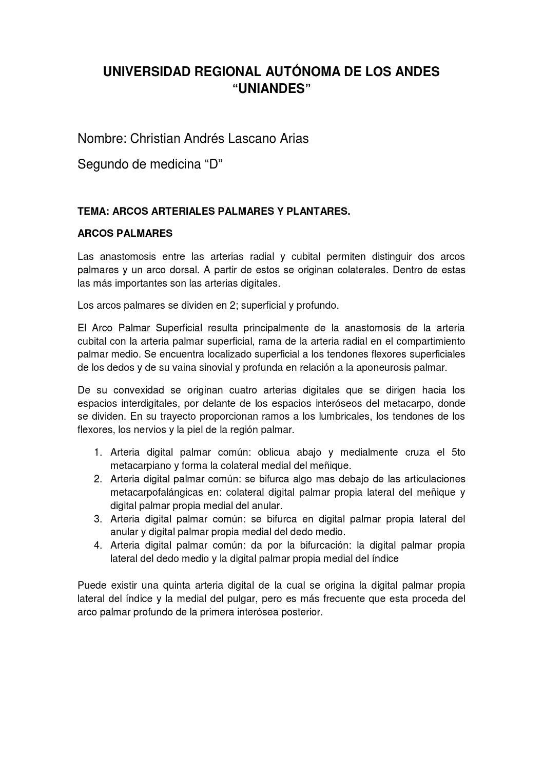 Arcos Arteriales Palmares y Plantares by Clascano495 - issuu