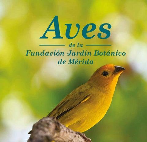 Aves de la fundaci n jard n bot nico de m rida by karla for Aves de jardin