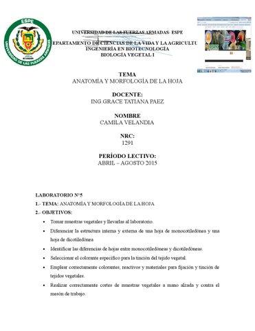 Informe lab #5 anatomía y morfología de la hoja velandia camila by ...