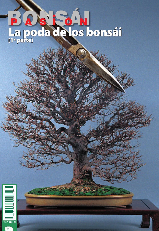 Bons i pasi n 80 by jardin press issuu for Oficina 3058 cajamar
