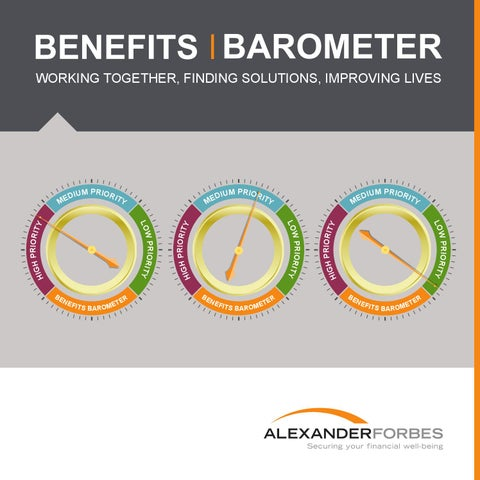 Benefits barometer 2014 by alexander forbes comms issuu working together finding solutions improving lives fandeluxe Gallery