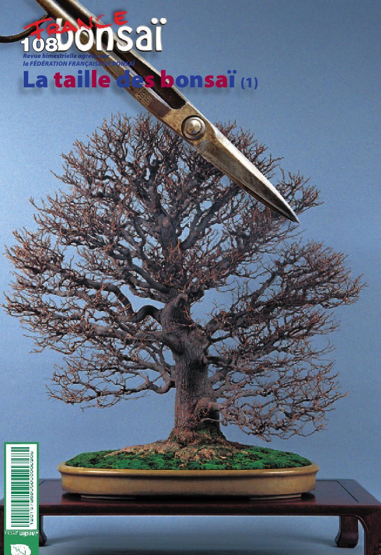 france bonsaï 108jardin press - issuu