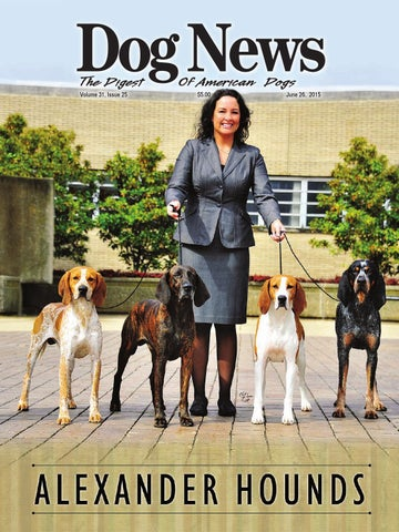 frye shoes for women melanie camacho pictures of dogs