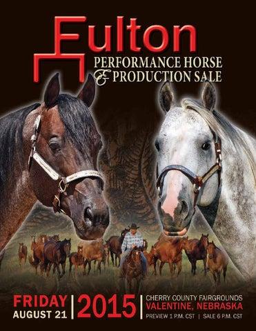 2015 Fulton Performance Horse & Production Sale by Design Unbridled