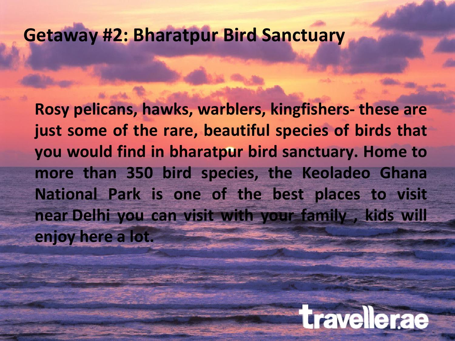 Weekend Getaways From Delhi Tour Travel Holiday Company Of Dubai By Travellerae Issuu
