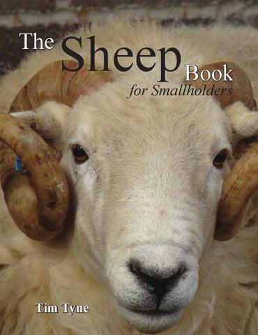 5X Drink Bottle Nipple Teat Lamb Feed Kids Pets Pup Orphan Soft Ewe Goats Sheep/>
