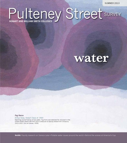 fbdf2a3f931e37 Pulteney Street Survey Summer 2013 by Hobart and William Smith ...