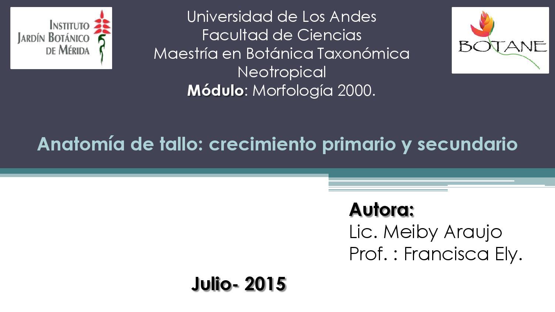 Catalogo de anatomía de tallo by meiby araujo - issuu