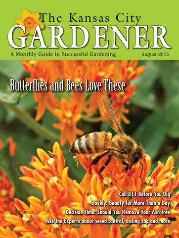 KCG 08AUG15 by The Kansas City Gardener - issuu