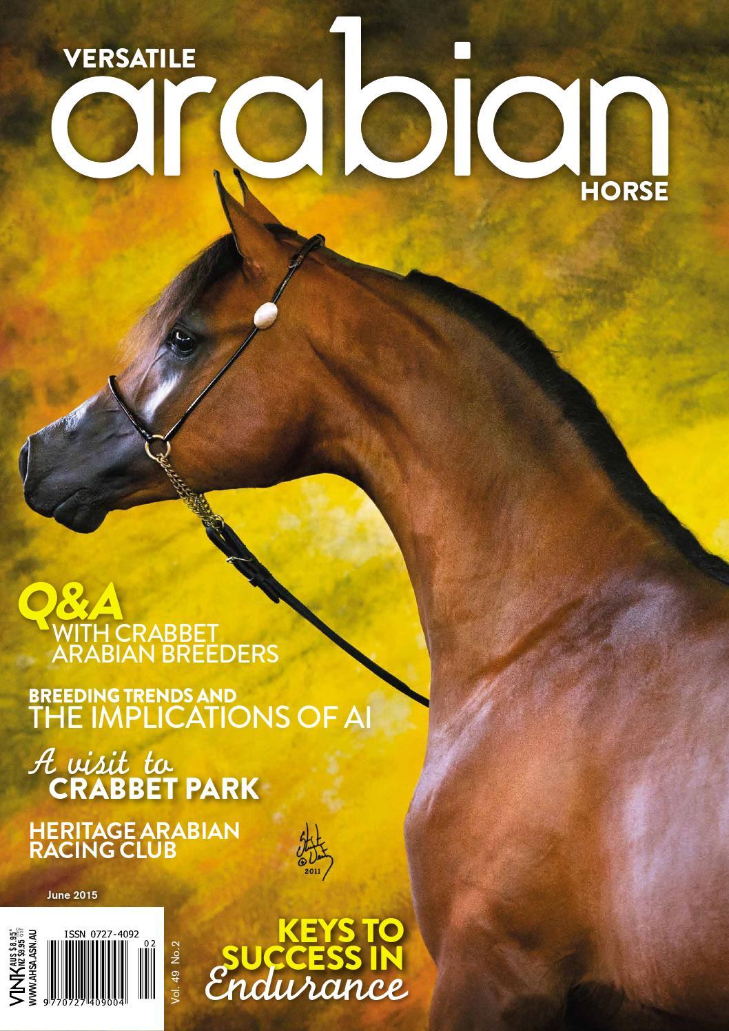 Arabian Horse News June 2015 By Vink Publishing Issuu
