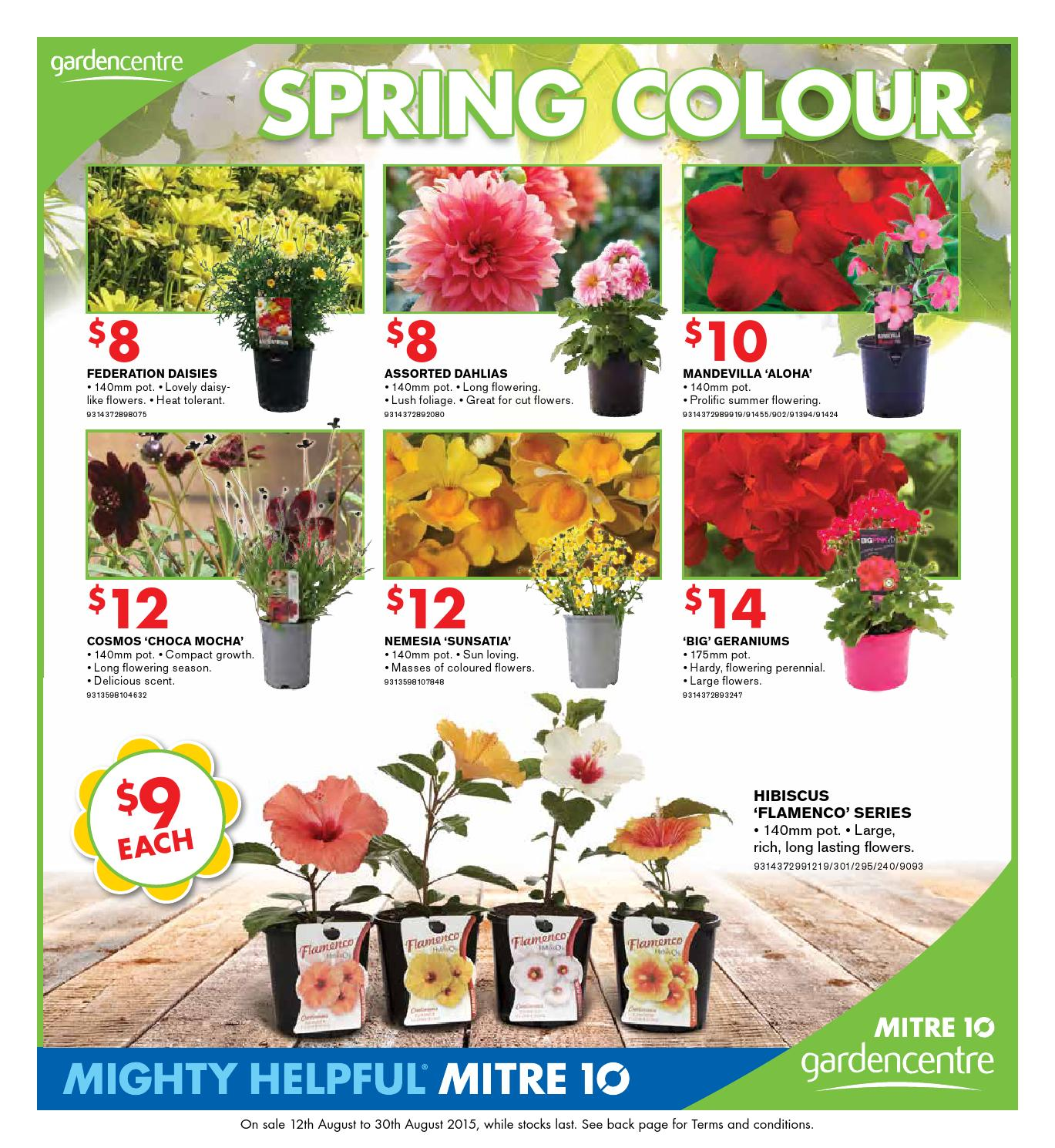 Catalogues By Echo Publications Issuu Fresh Mitre 10 Outdoor Furniture  Catalogue Part 35