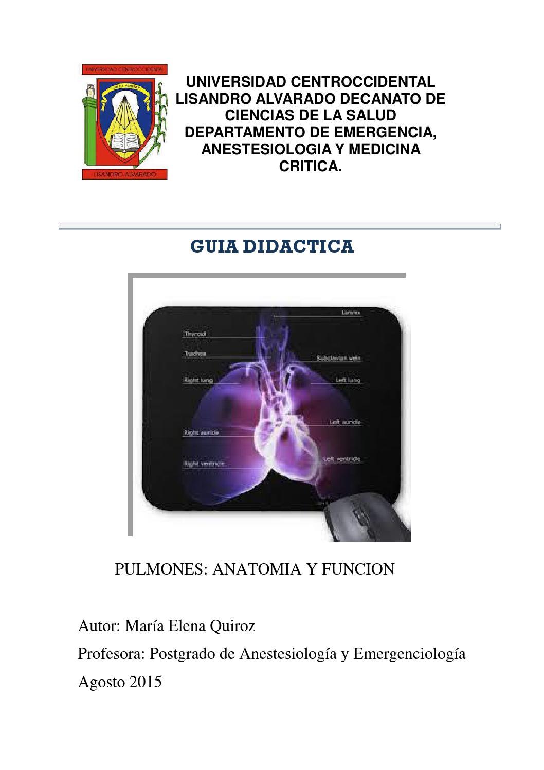 Fisiologia respiratoria para diplomado by mariaquiroz3 - issuu