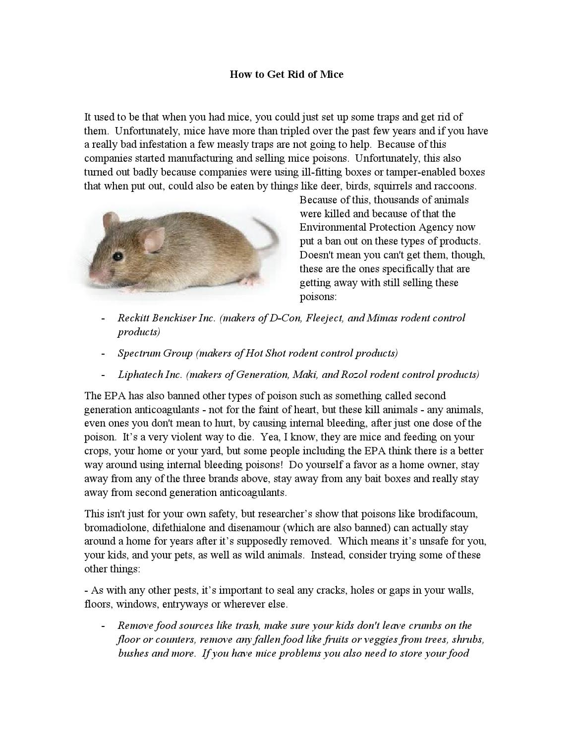 how to get rid of mice mobile home