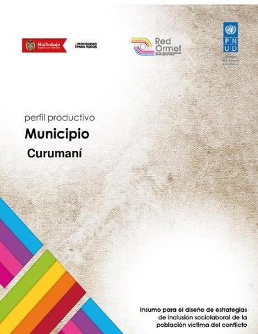 7a37b6ebaff95 Perfil productivo Curumaní by PNUD Colombia - issuu