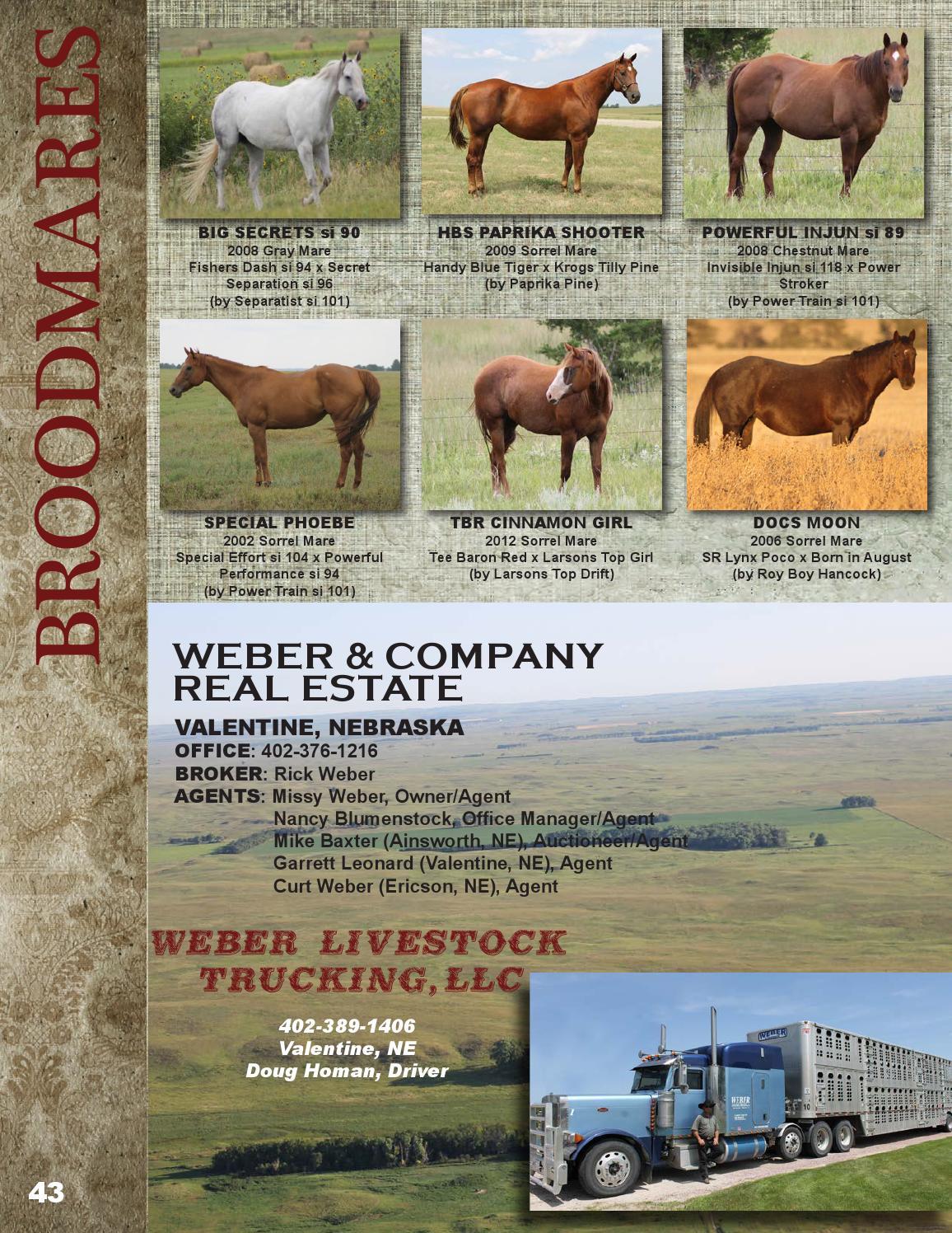 Weber Quarter Horses 2015 Performance Horse Sale by LivestockDirect
