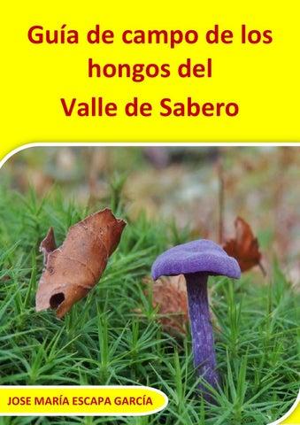 Reproduccion asexual de las plantas esporas de alpaca