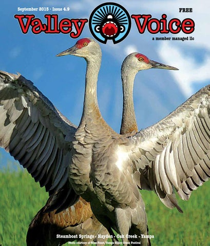 Valley Voice September 2015 By Paulie Anderson Issuu