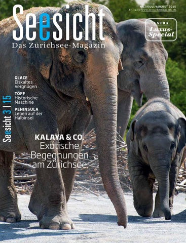 Seesicht 32015 by Seesicht Media AG issuu