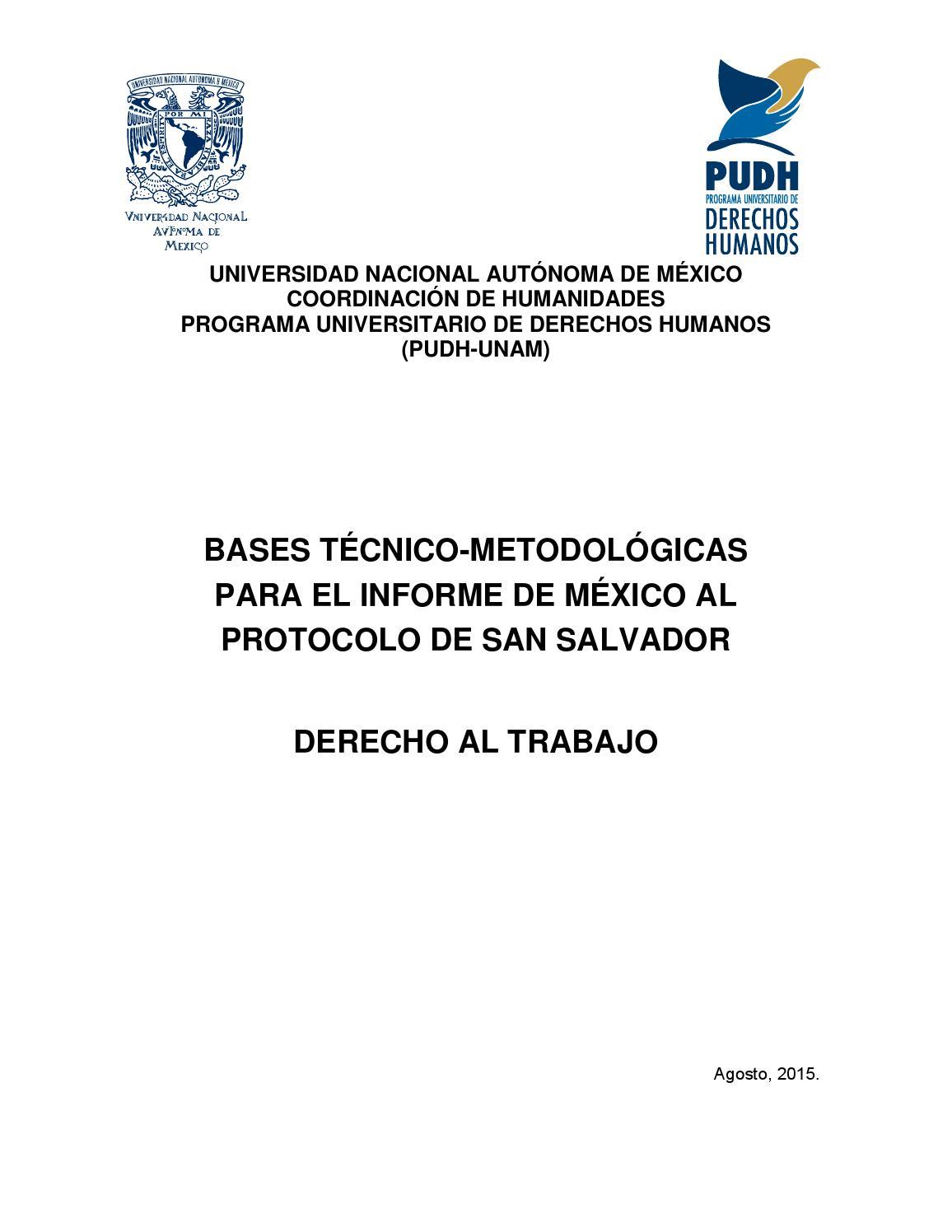 Btm Para El Informe De México Al Protocolo De San Salvador