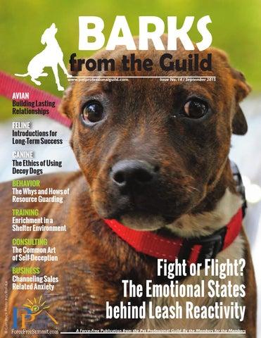 Competent Sports Training Dog Harness Heavy Duty Pitbull Mastif K9 Labrador Siberian Husky Home & Garden