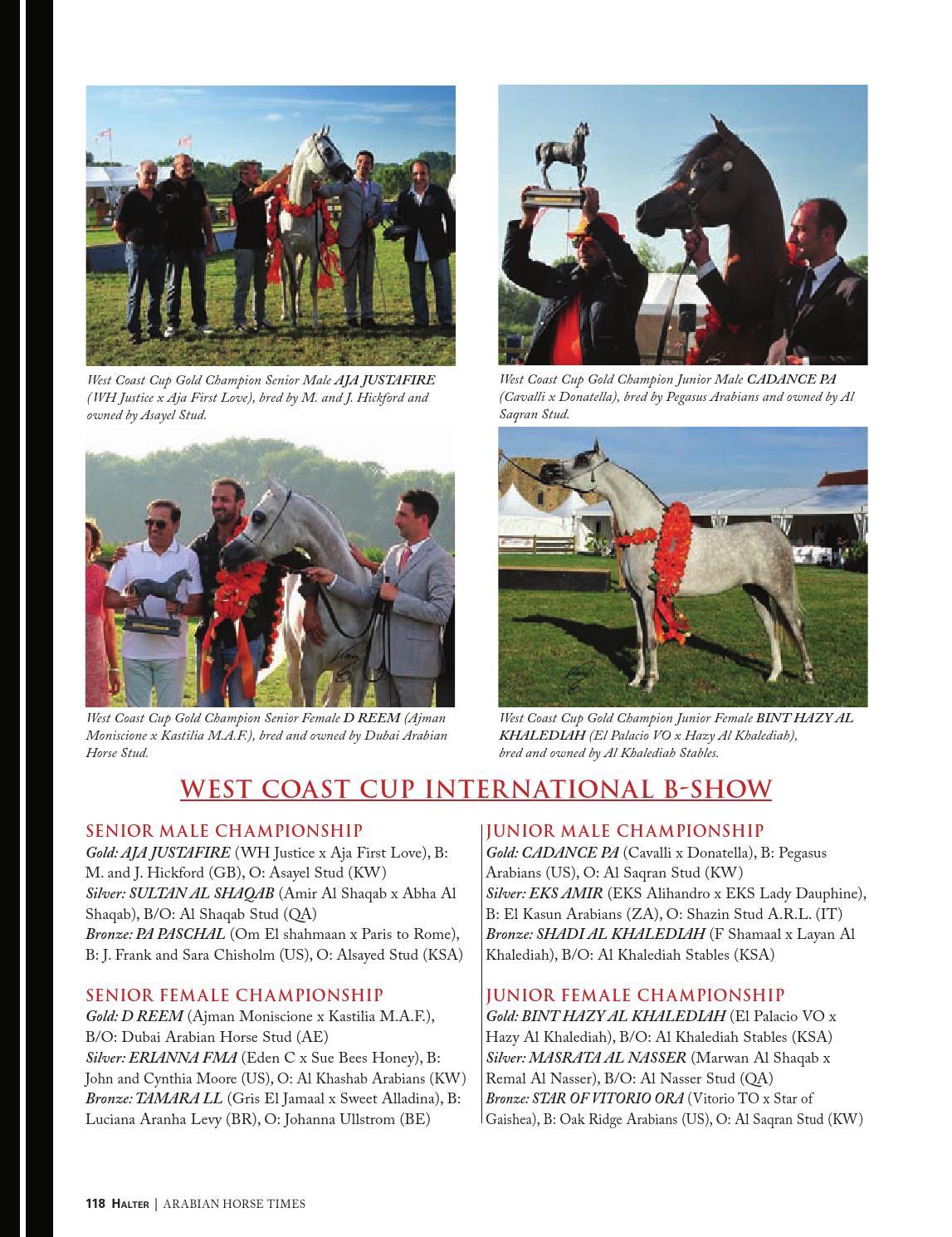 arabian horse times vol 46 no 3 by arabian horse times issuu