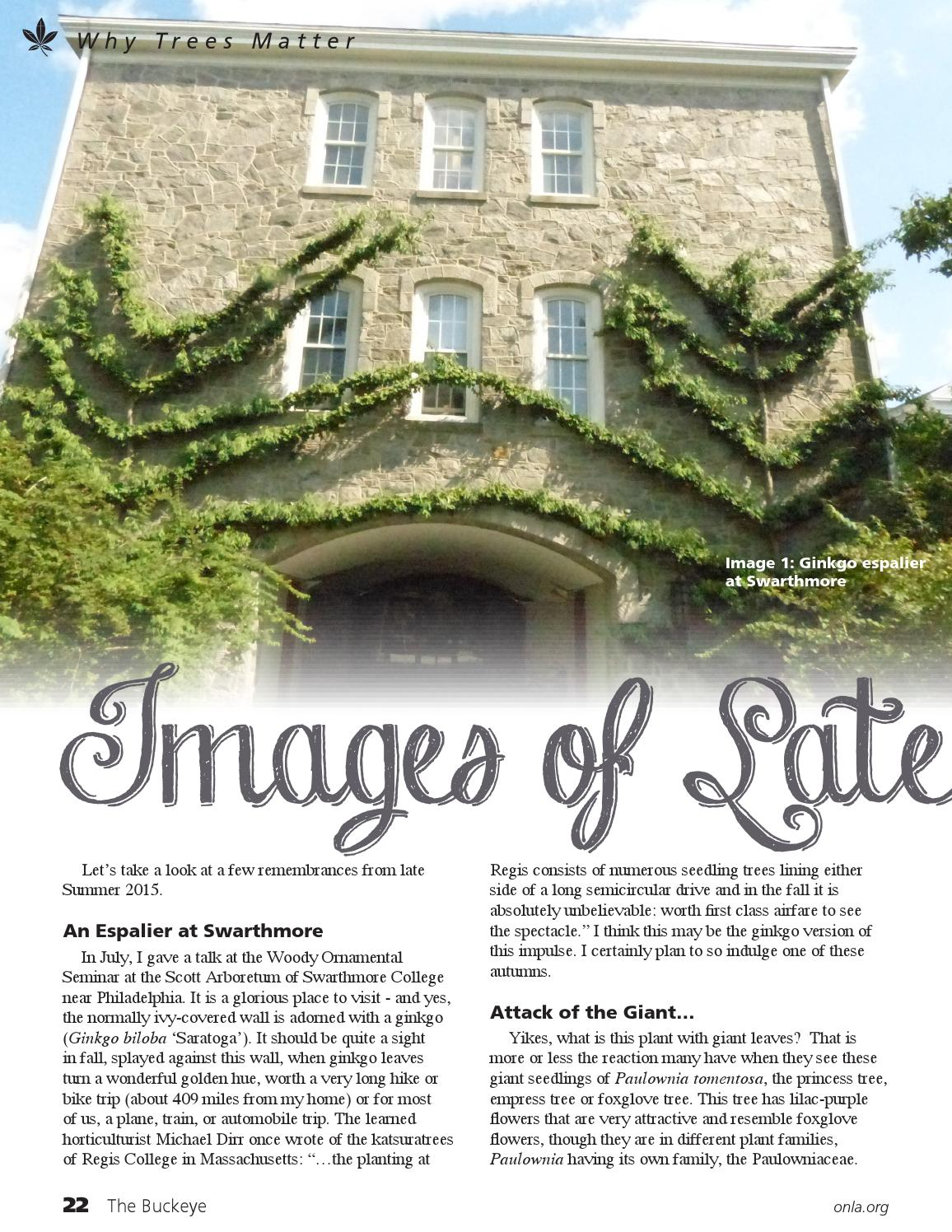 The Buckeye, September 2015, Volume 26, Issue 8 by ONLA - issuu