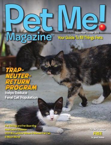 feral cats good pets