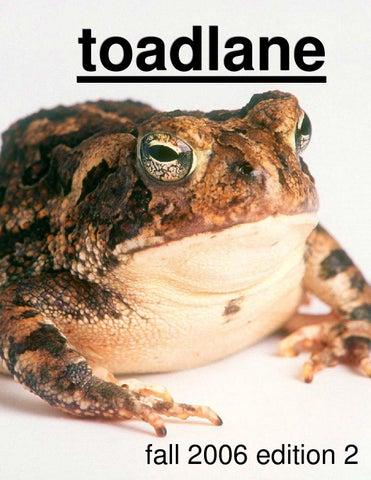 toadlane - December 2006 by WCRI toadlane - issuu