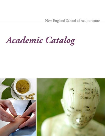New England School Of Acupuncture Academic Catalog By New England