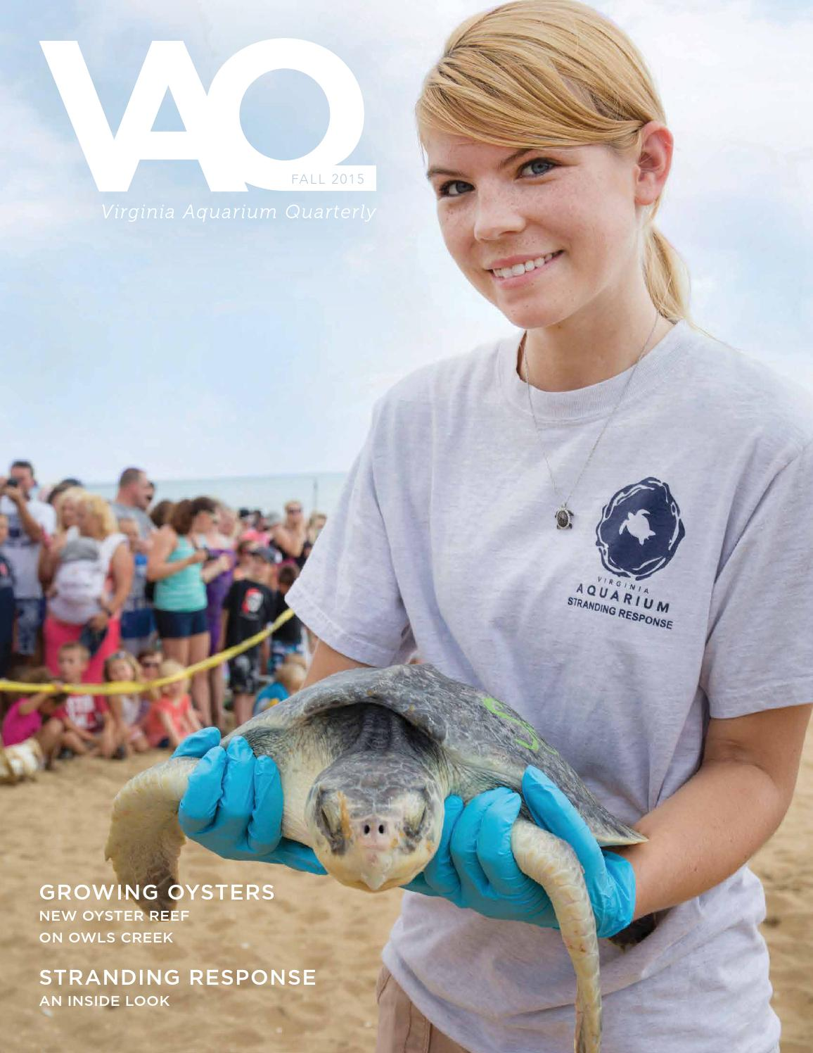 Fall 2015 vaq by virginia aquarium issuu for Fish store virginia beach