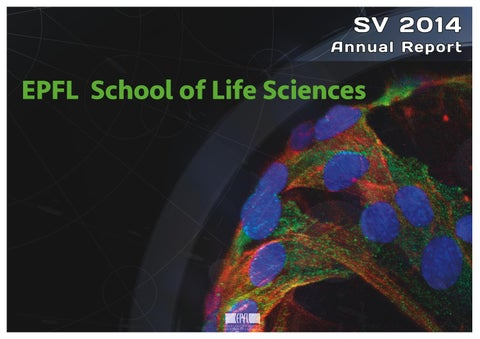 Annual report 2014 sv by epfl school of life sciences issuu page 1 fandeluxe Image collections