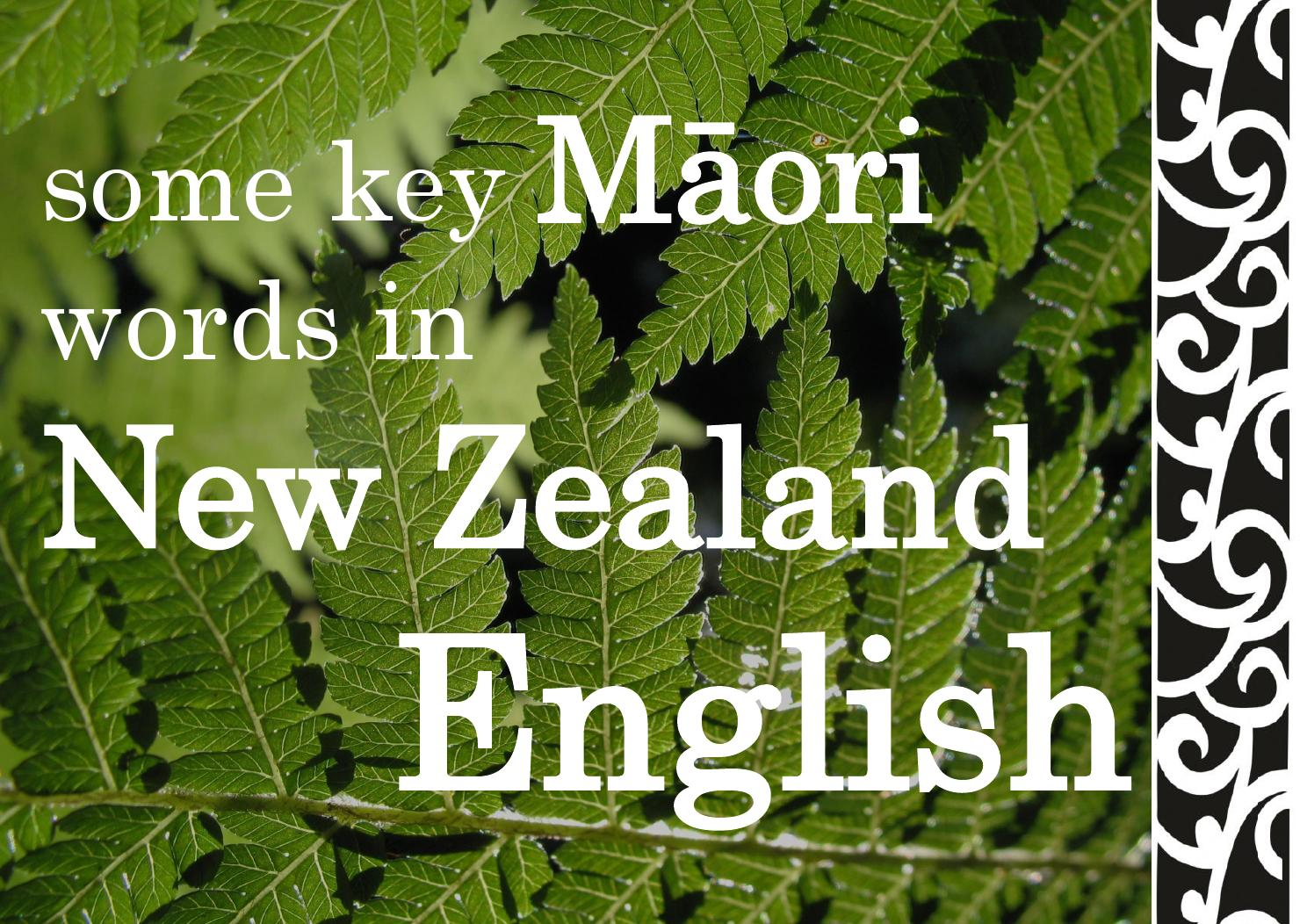Maori Words In English By Language Learning Centre Issuu