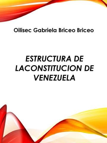 Revista Estructura Constitucion By Deljoan Martinez Issuu