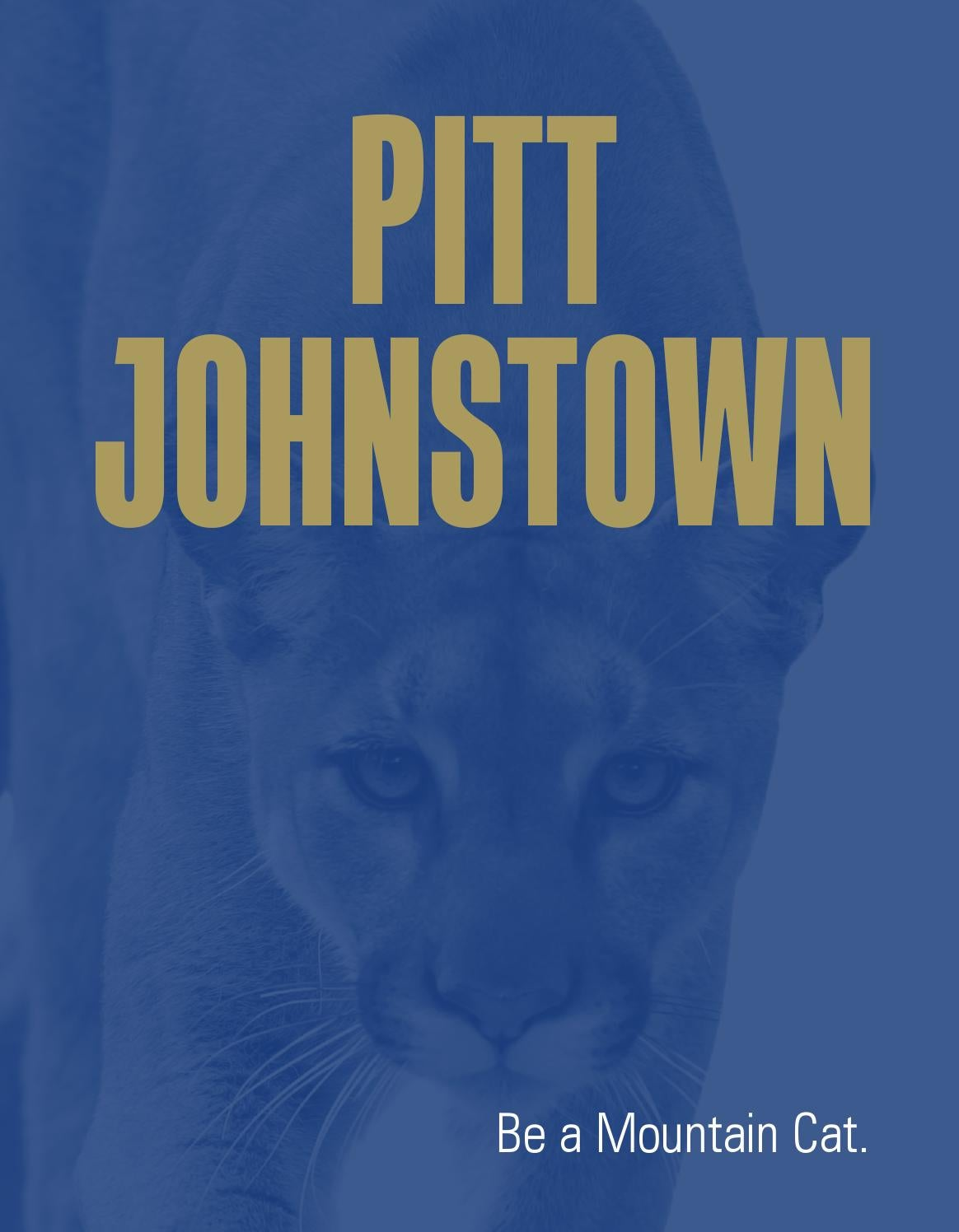 pittjohnstown viewbook by pittjohnstown issuu