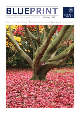 Blueprint march 2015 by university of oxford issuu blueprint october 2015 malvernweather Image collections