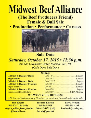 Midwest Beef Alliance Female & Bull Sale by American