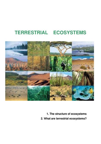Terrestrial ecosystem student worksheets by ...