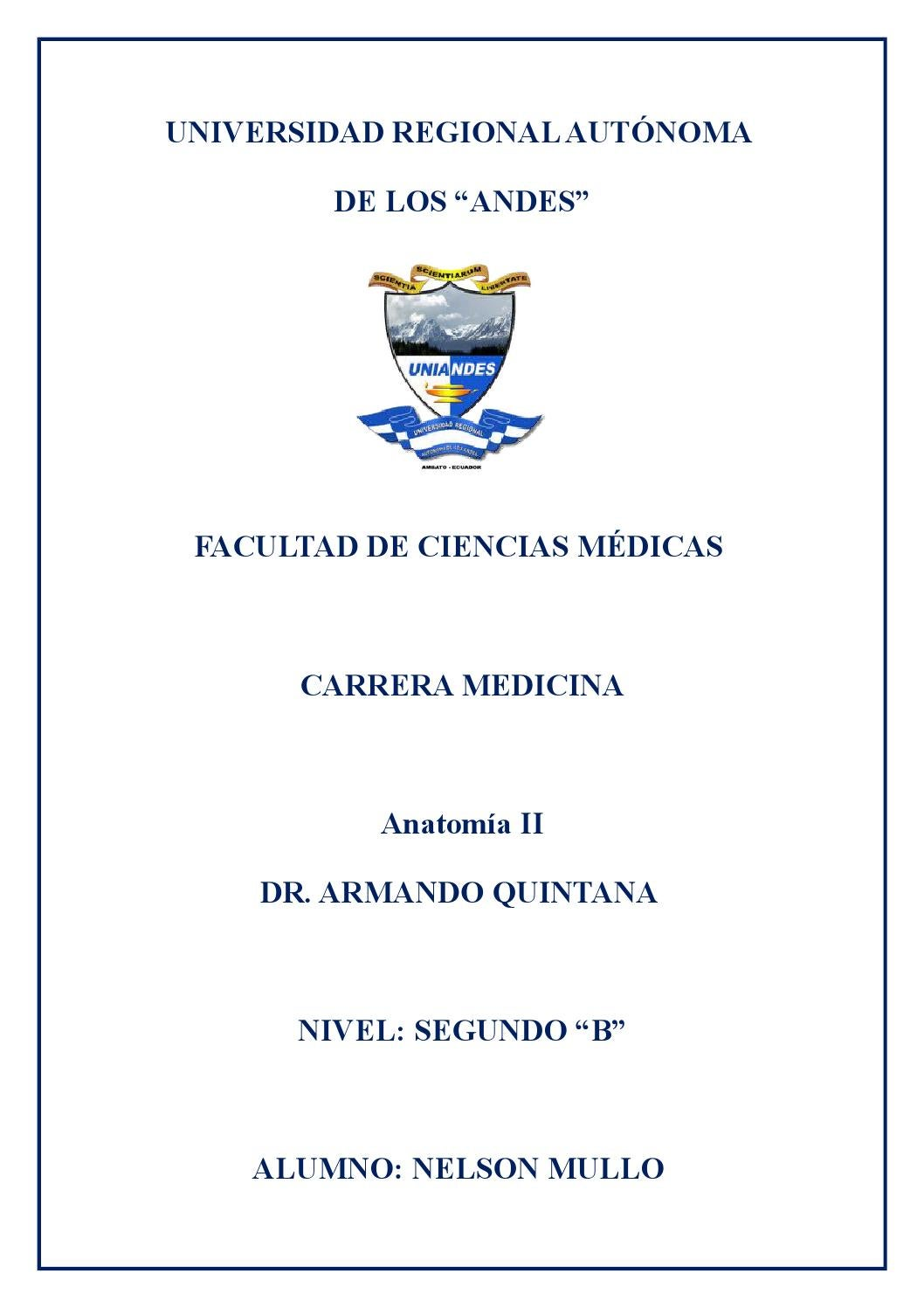 Glosario de término Anatomía II by Nêlsïtõn Mullo - issuu