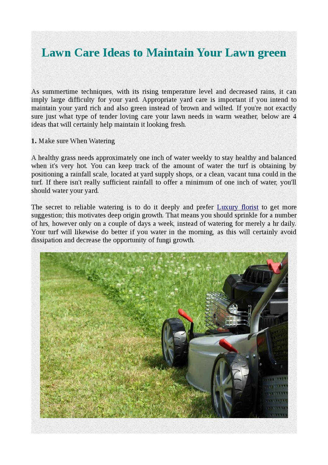 Lawn care ideas to maintain your lawn green by jamescarmouche issuu publicscrutiny Image collections