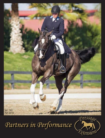 bc654a6d39efb Dressage Extensions Catalog 162 by Dressage Extensions - issuu