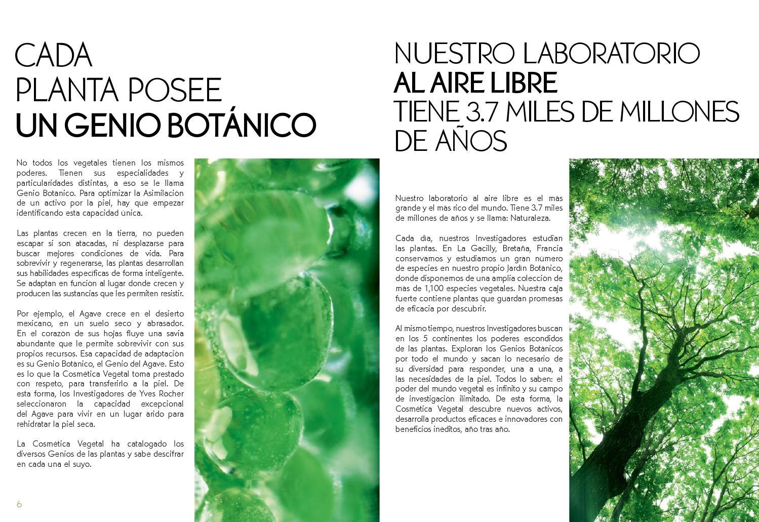 Libro Verde de la Belleza Yves Rocher 2015 by yvesrocherdemx - issuu