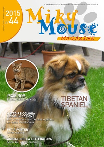 Mikymouse Magazine By Hellobrand Issuu